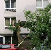orkan-duesseldorf-090614-07