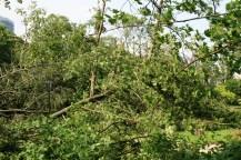 orkan-duesseldorf-090614-14