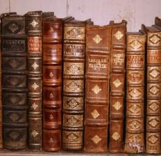 Mafra-library-books