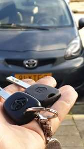 Bieshof auto sleutel