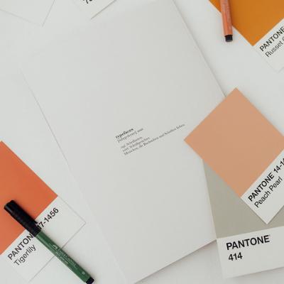 Handlettering Magazin Typefaces