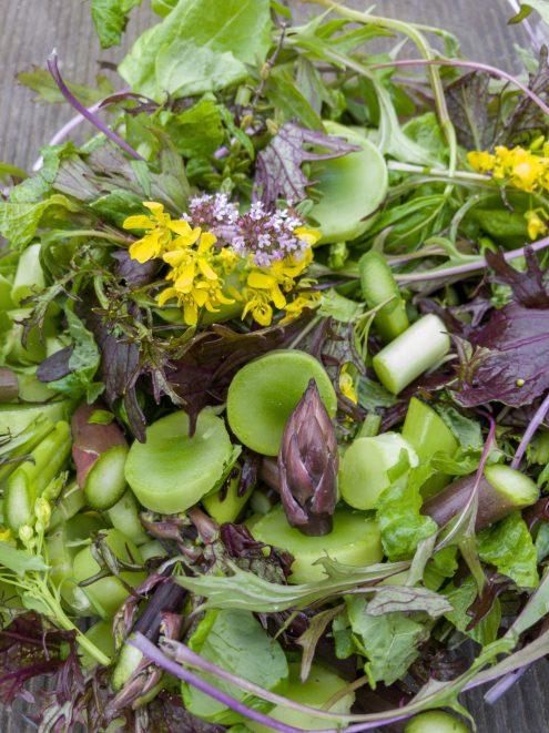 Lecker Salat mit allem, was der Balkon Garten bietet.