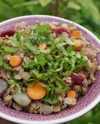 Leckerer Linseneintopf mit dem Gemüse aus dem eigenen Balkongarten