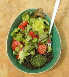 Gartensalat mit Beluga Linsen und Shiso Pesto.