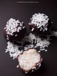 Kokos-Milchreis-Trüffel