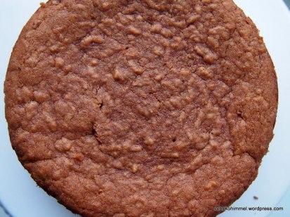 Schoko-Apfel-Kuchen ohne Glasur