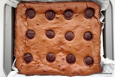 ein Blech Brownies