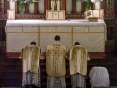 03 - Jeudi Saint 2015 - prières au bas de l'autel