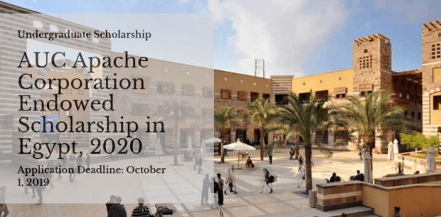 AUC Apache Corporation Endowed Scholarship in Egypt 2020 1024x506 - VC Equality Scholarship at University of Witwatersrand in South Africa 2020