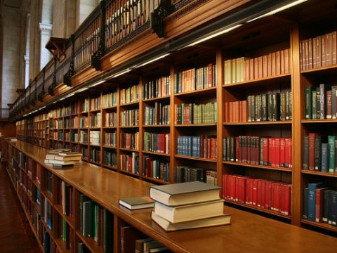 LIAJA library studies
