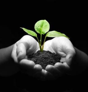 Courage to Grow Scholarship