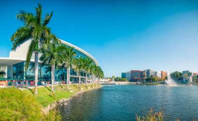 University of Miami offers The Stamps Scholarships for International Undergraduate Students