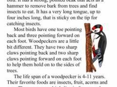 1 printable third grade reading comprehension worksheets