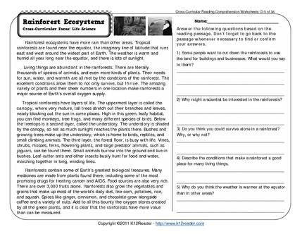 Comprehension Worksheets 4th Grade #2