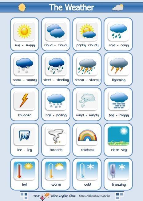 Esl Vocabulary Worksheets #2