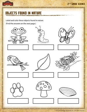 Nature Of Science Worksheets #2