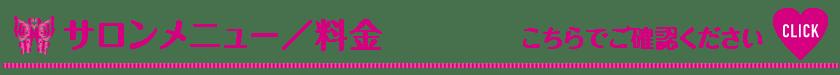サロンメニュー・料金_Vivienne Waxing【大阪・南堀江】ブラジリアンワックス 心斎橋 難波 ヴィヴィアン