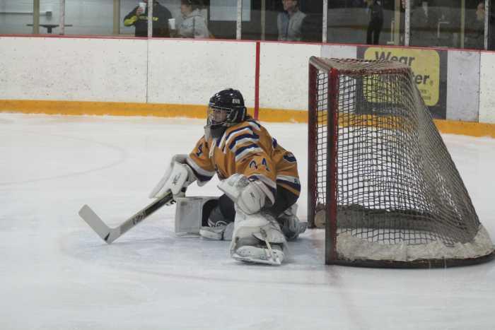 hockey-1-edited