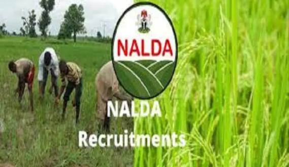 nalda.ng Recruitment Login Portal