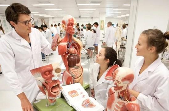 school of Nursing to Study abroad programs