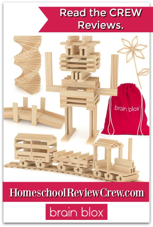 Brain Blox Wooden Building Planks {Brain Blox Reviews}
