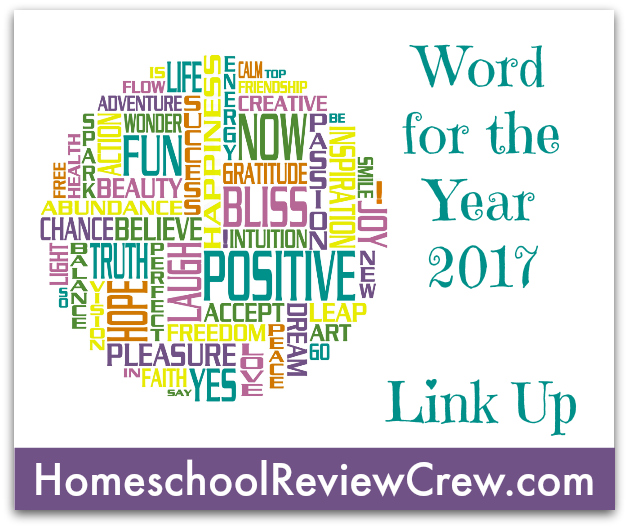 Homeschool Review Crew Reflecting on 2016