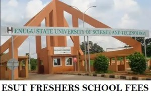 ESUT SCHOOL FEES 2017/18 ACADEMIC SESSION