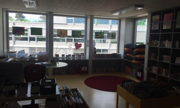 Library in primaire of Ecole Moser