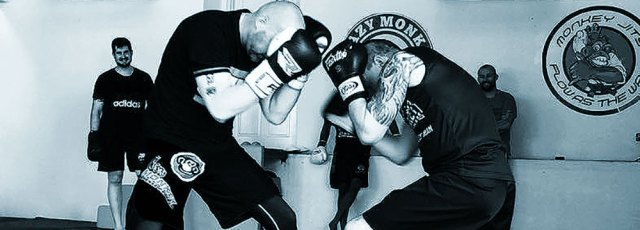 The Future Of Traditional Martial Arts?