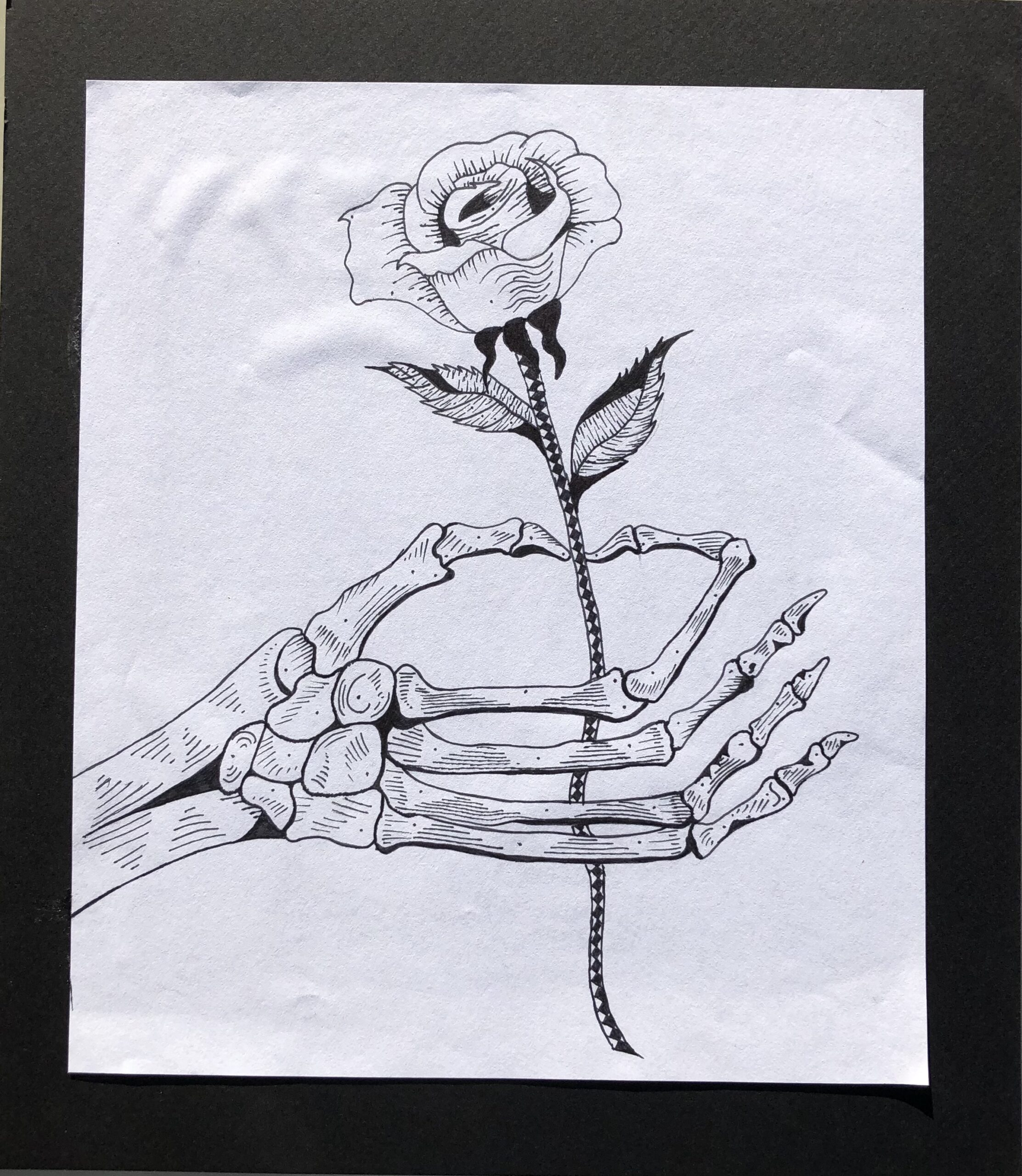 drawing in pen of skeleton hand holding rose