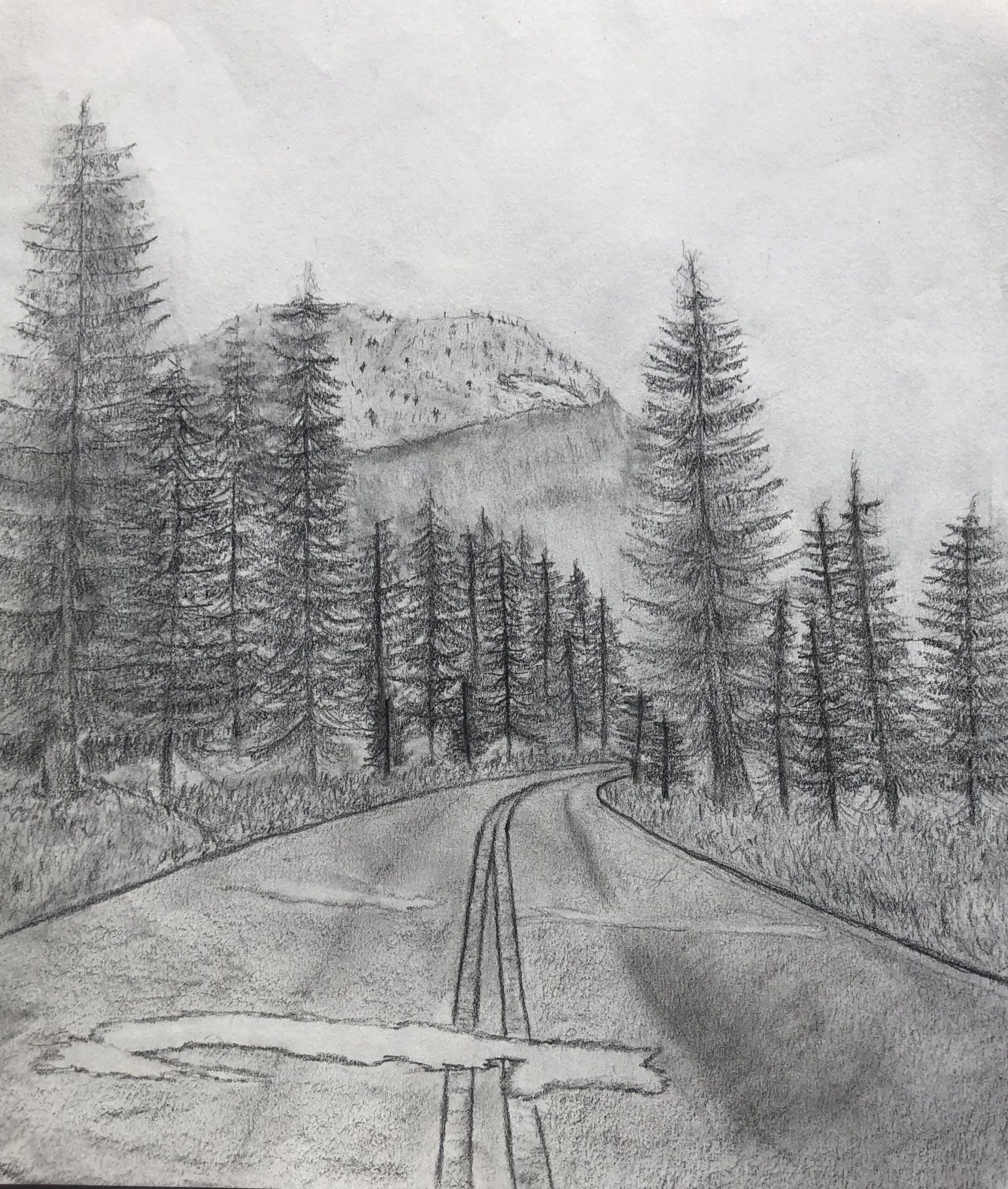 highway through forest charcoal drawing