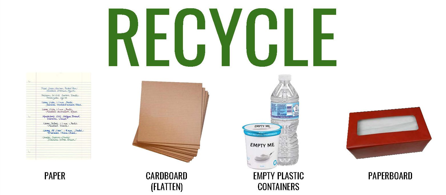 """""""Sustainability Students Revitalize Recycling at North"""""""