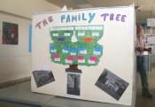 Arbre généalogique de la famille Desbassayns