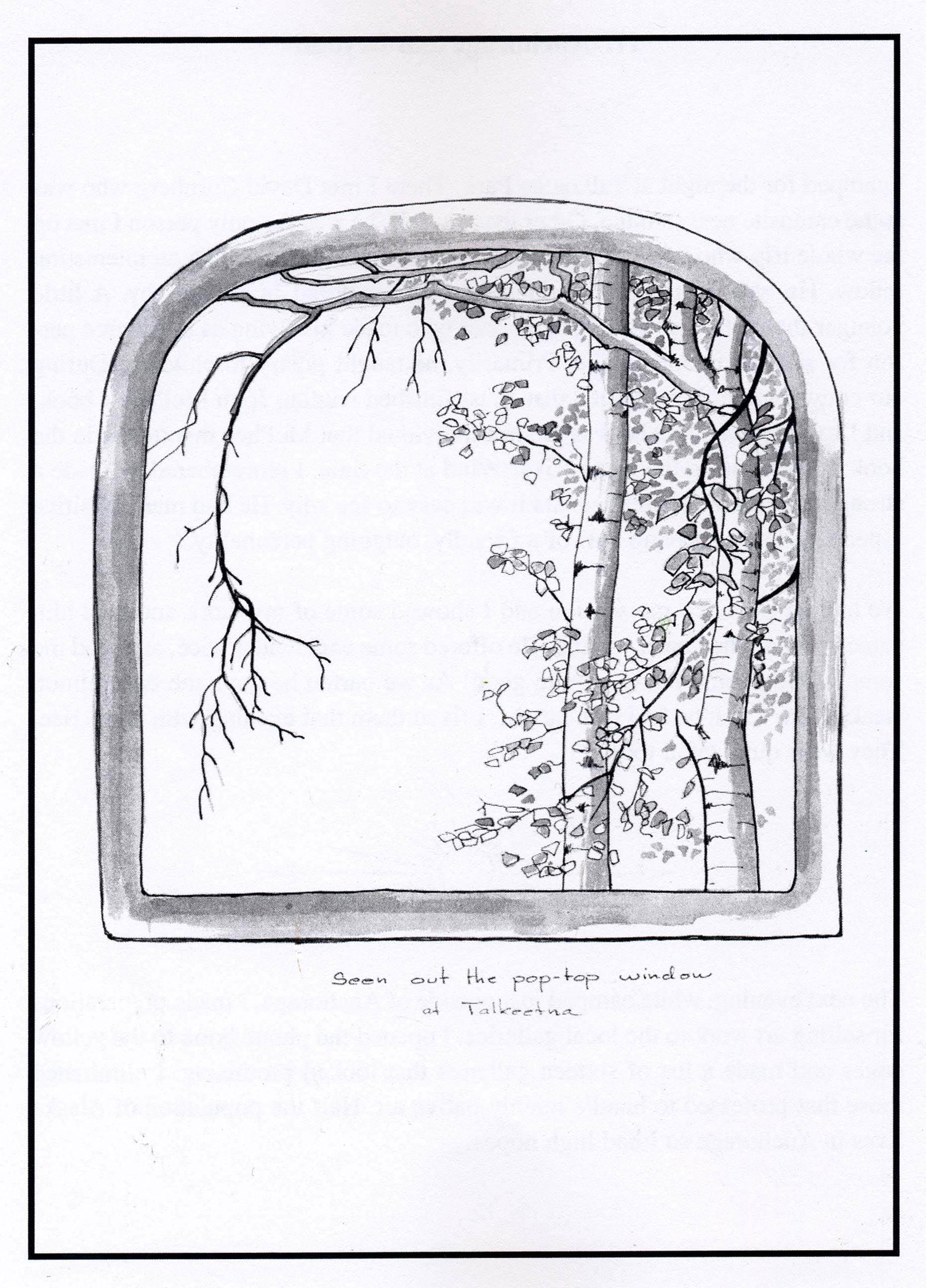 Rambler Poptop Frame Timber Or Aluminum
