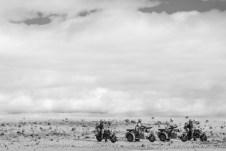 Italeri German Motorcycles and Afrika Korps_008