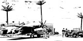 Tropical Airfield_American_001