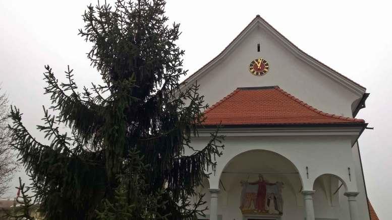 christbaum2014gestellt
