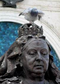 91 Queen Victoria and a pigeon resized