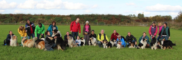 2015-10-25-ColliewandelingAfferden
