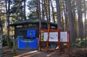 Im Osprey Centre koennen Sie waehrend ihrer Familienreise Schottland die seltenen Fischadler beobachten.