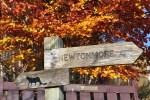 Wandern Sie mit den Kindern auf dem Wild Cat Trail, der Teil unserer Familienreise Schottland ist.