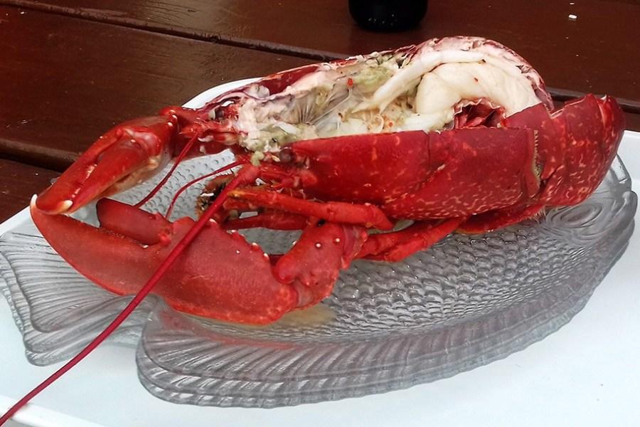 Wenn Sie Meeresfrüchte lieben, dann sind Sie auf unserer Genussreise durch Schottland genau richtig.