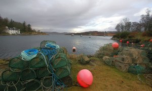 Auf einer Genussreise durch Schottland kann man während einer Shellfish Safari Krabben fangen.