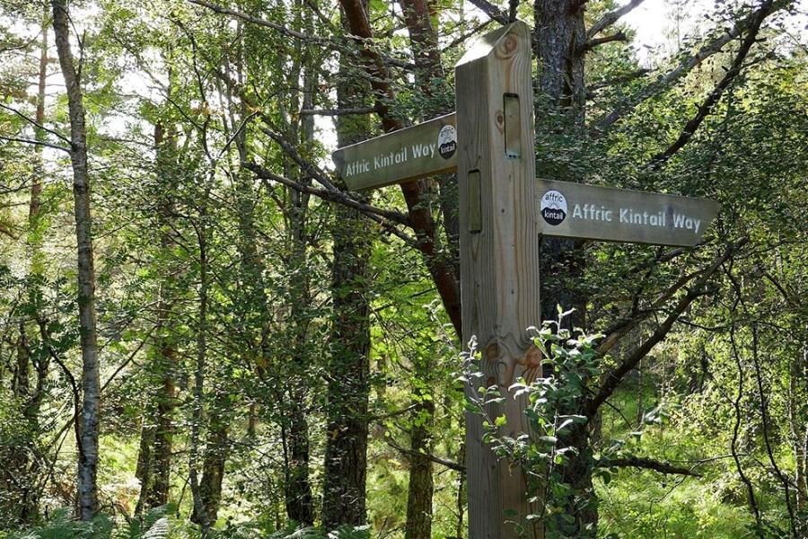 Erwandern Sie den Glen Affric Kintail Way, der zu den schoensten Wanderrouten Schottlands zaehlt.