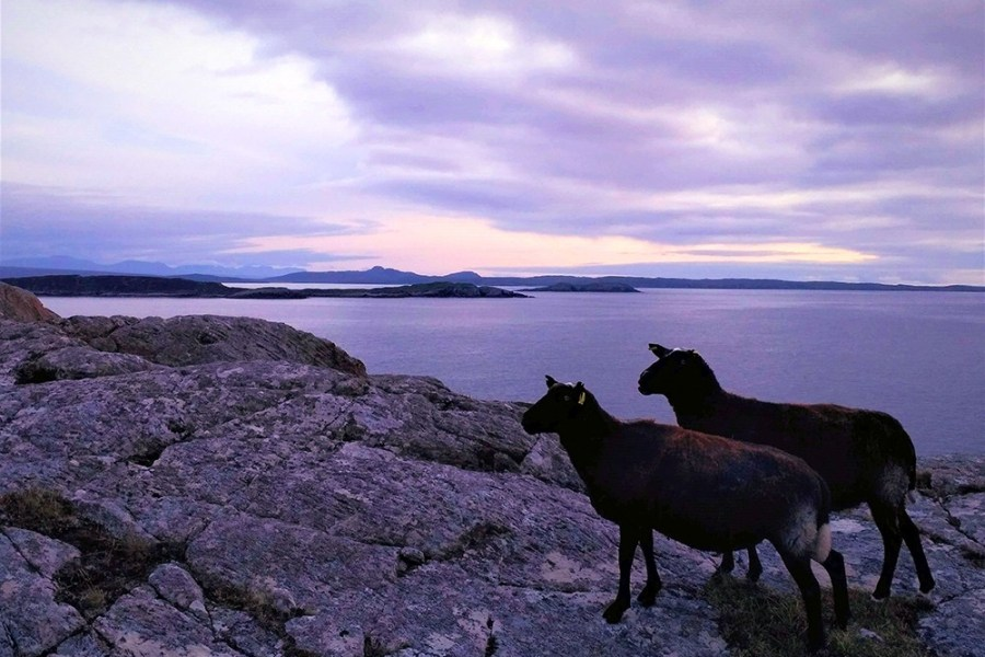 Lochinver ist die noerdlichste Basis unserer Individualreise durch Schottland.