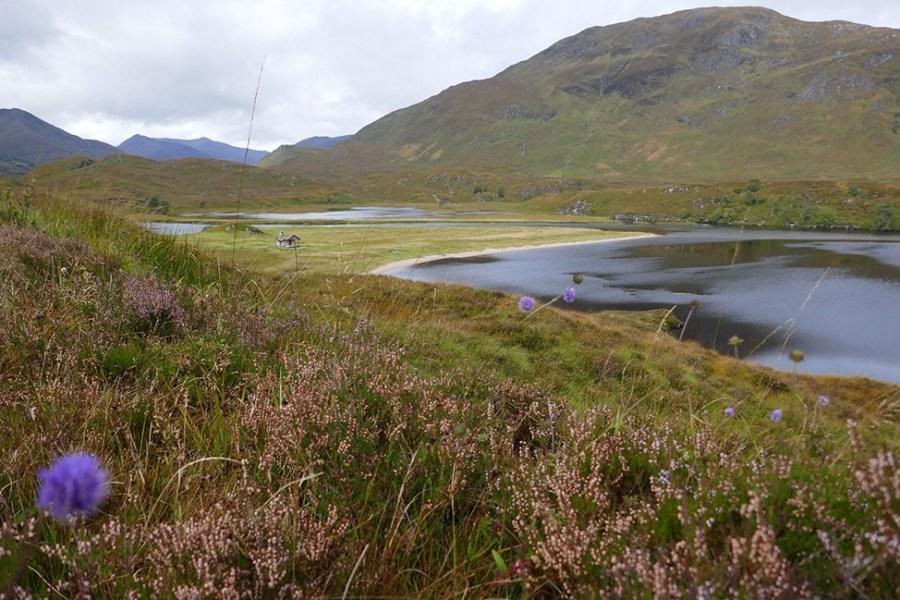 Die Schoenheit des Glen Affric laesst am besten auf einer individuellen Wanderreise erkunden.