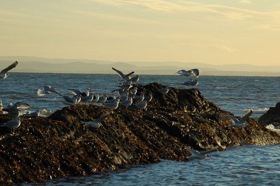 Fuer unsere umweltbewussten und nachhaltigen Schottlandreisen wurden wir mehrfach ausgezeichnet.