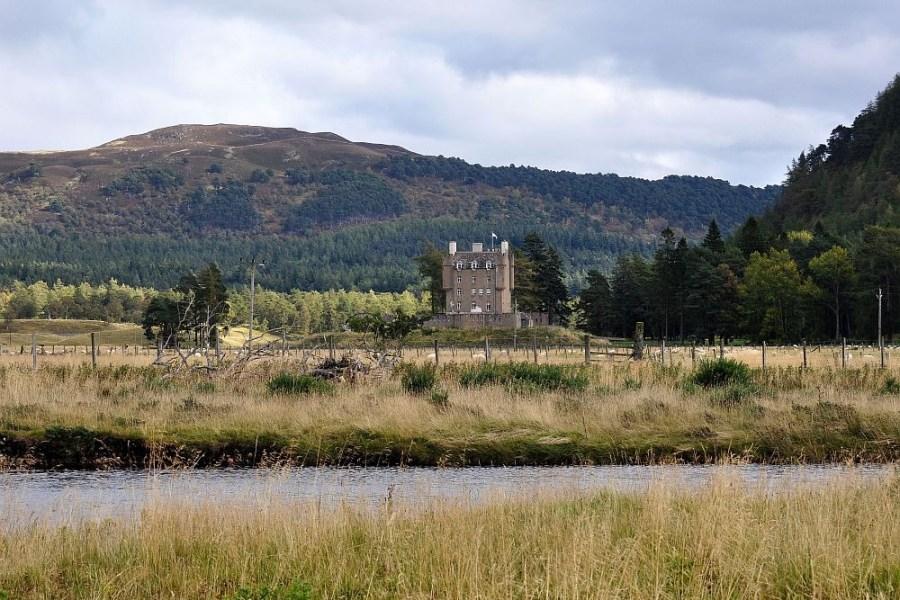 Die individuelle Wildlife Reise durch Schottland birgt unvergessliche Urlaubsmomente.