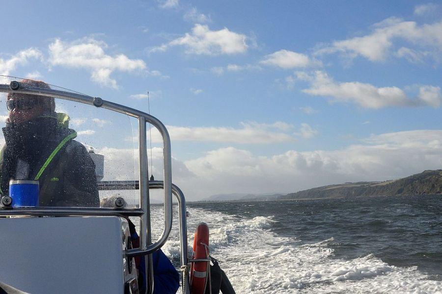 Auf dieser Schottlandreise koennen sie an einer Delfinbeobachtung teilnehmen.