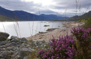 Die Fernwanderung am Great Glen Way dauert ca. 7 Tage.